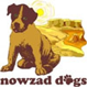 sponsership nowzad dogs